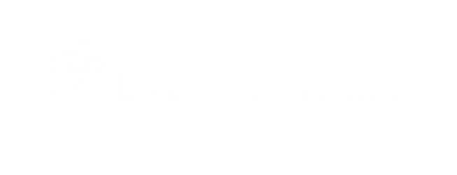 logo2_software2